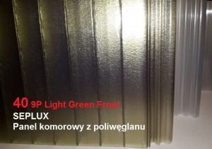 PC-Panel SEPLUX 40 9P IR Light Green